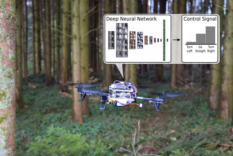 There's No Escape From These Drones That Track Your Trails in the Woods