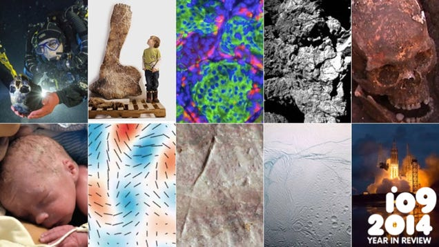Biggest Scientific Breakthroughs Of 2014