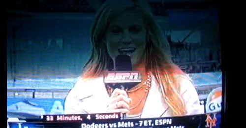 The Erin Andrews Chin Incident: A Reconstruction