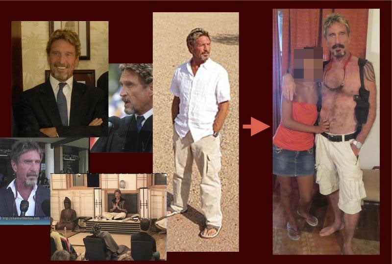 The Crazy Secret Journal of John McAfee, Volume 1: The Girl Assassin