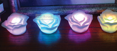 LED Roses Never Wilt