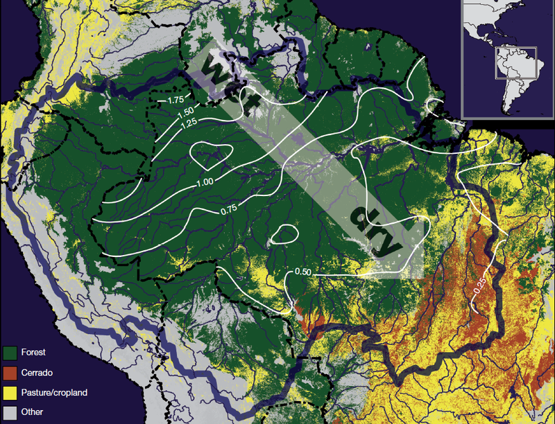 Earth's Tropical Rainforests Could Look Completely DifferentBy the End of the Century