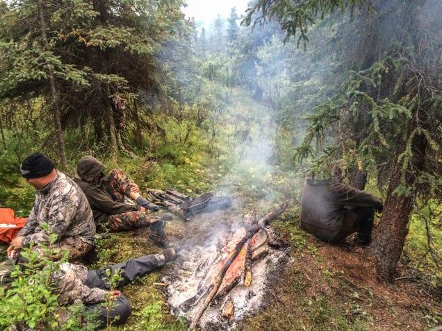 Hunting Alaska's Most Elusive Big Game