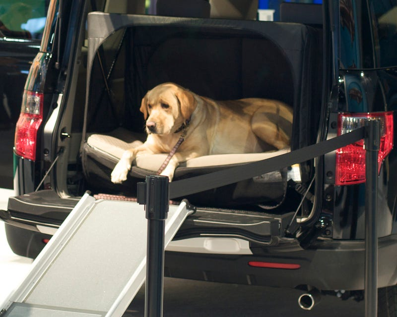 The Ten Best Cars For Dog Owners