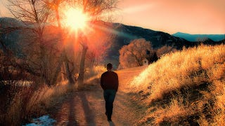 Take a More Effective Break By Allowing Your Mind to Wander