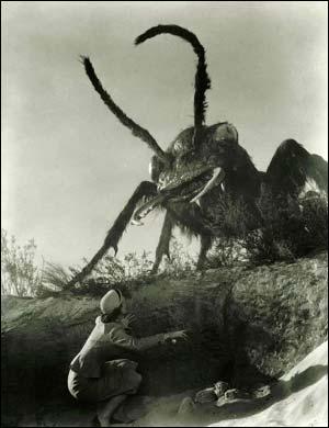 Scientists unlock the secrets behind growing giant bugs
