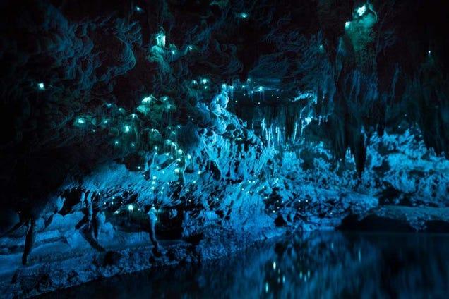 Estas cuevas se iluminan gracias a gusanos carnívoros fosforescentes
