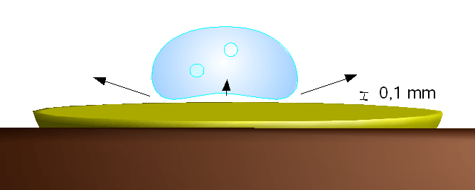The Leidenfrost Effect: Nature's Hovercraft