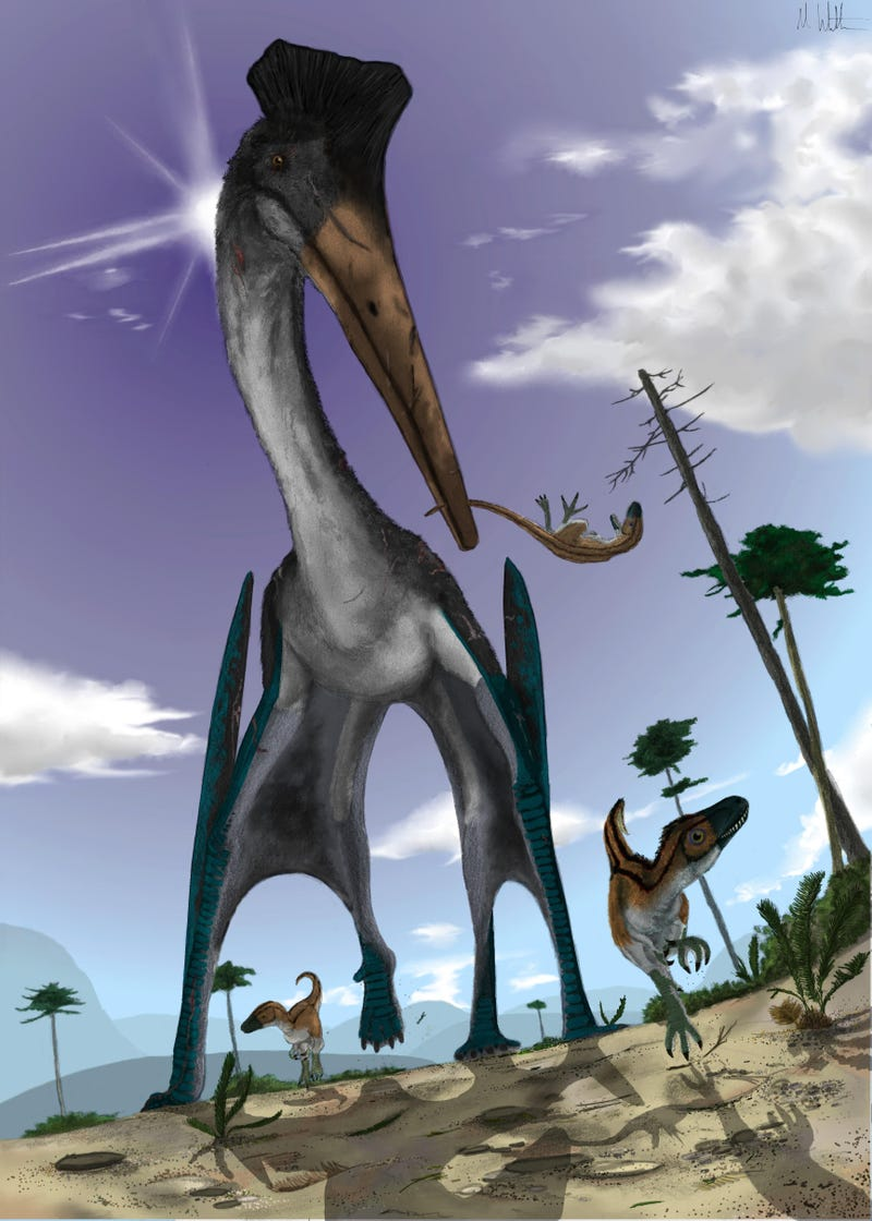 What would the world be like if pterosaurs and humans coexisted today? (Part II)