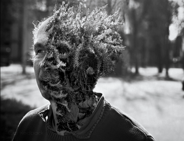Creepy photoshopped portraits of human-plant hybrids