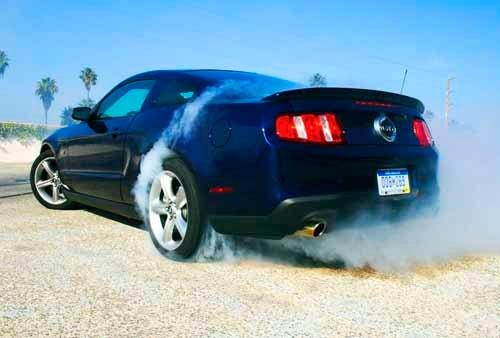 More Beans Spill On Ford's 5.0-Liter V8
