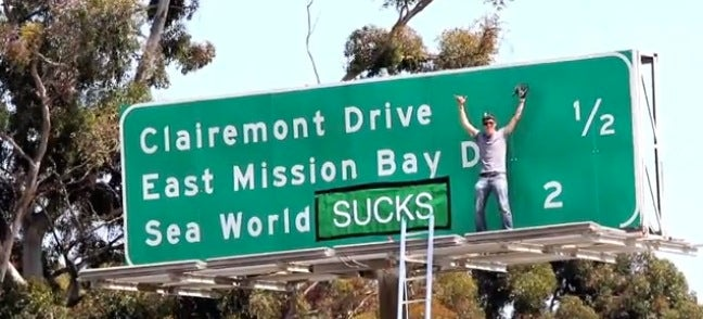 Watch This Documentary And Remember Why SeaWorld Sucks