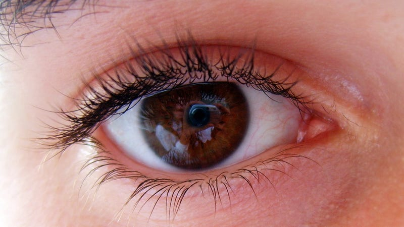 Scientists Use Gene Therapy to Stop Six People Going Blind