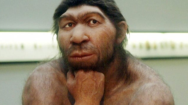 Neanderthal Dna Test New DNA test will reveal if
