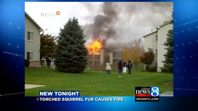 Fire That Left Dozens Homeless Blamed on Man Who Was Preparing to Eat a Dead Squirrel