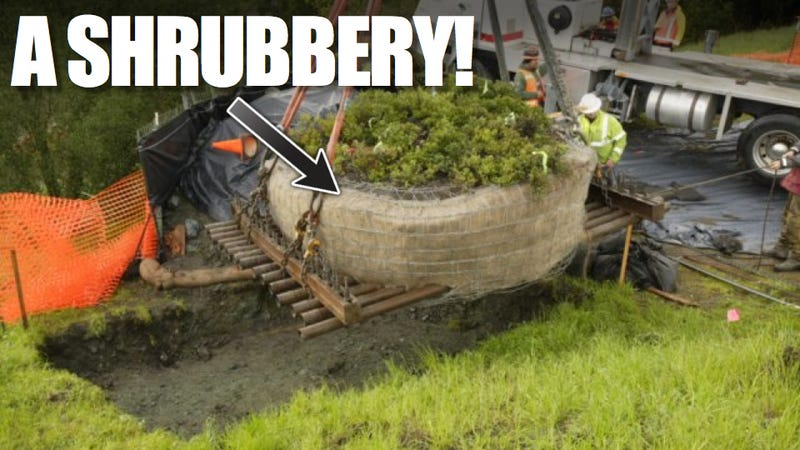 Why California Spent $205,000 To Move A $15 Shrubbery (UPDATE)
