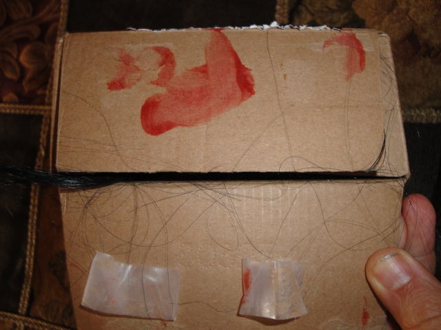 What's Inside the Blood and Hair Pasted Box?