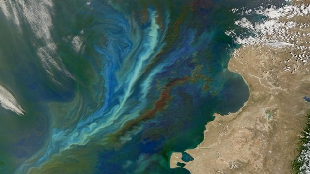 A massive and illegal geoengineering project has been detected off Canada's west coast
