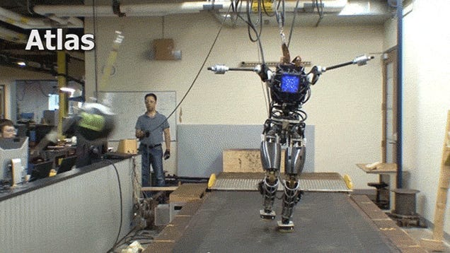 If You Could Have Any Boston Dynamics Robot, How Would You Use It?