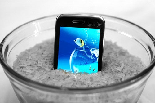 Testimonial: Rice Resurrects Even the Most Soaked of Gadgets