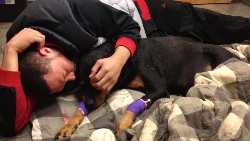 Charlie Batch Also Had To Put His Dog To Sleep Last Week