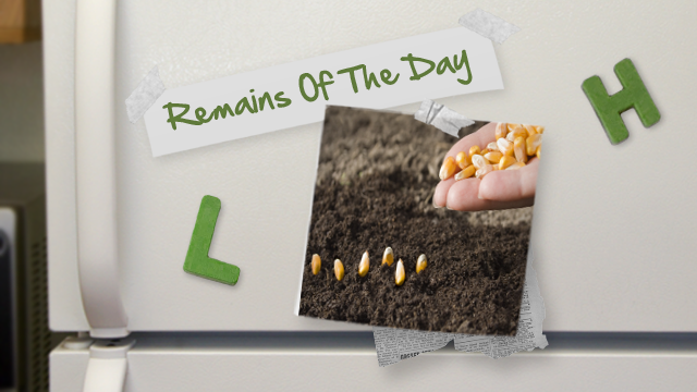 Remains of the Day: Is a Faster iPhone and New iPod Touch on its Way?