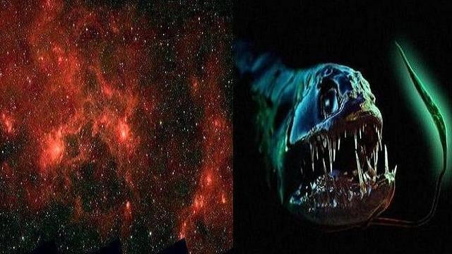 The Sheer Poetry of the Dragonfish in Space, its Mouth Full of Baby Stars