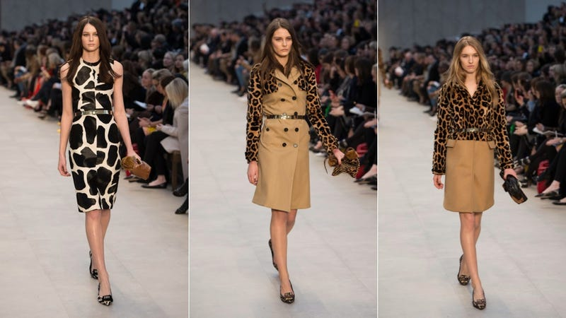 Burberry Prorsum, for Undercover City Kitties On the Prowl