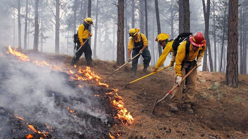 Vicious Wildfires Tear Through Colorado, Threatening Thousands