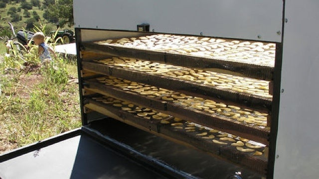 Dry Fruit Using the Power of the Sun