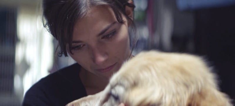 Mind-Blowingly Terrible Chevy Ad Reminds You Your Dog Will Die