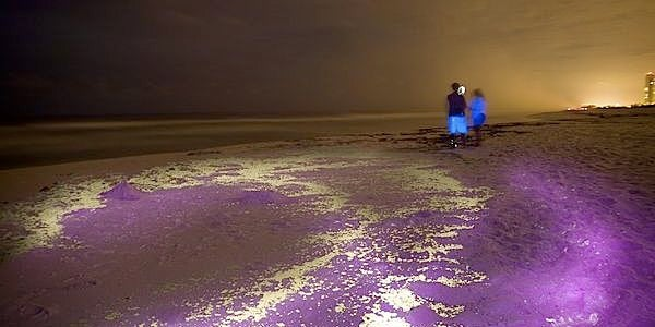 Ultraviolet Spotlight Reveals Oil Spill At Its Most Psychedelic
