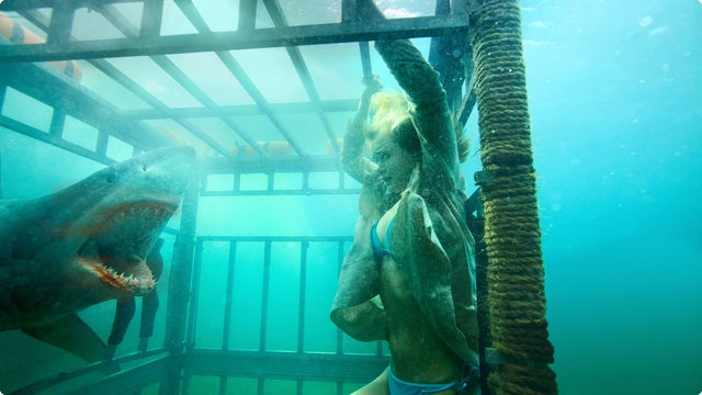 Is Shark Night 3D the culmination of all human aesthetic thought? Probably