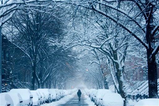 A Snow Falls in Brooklyn