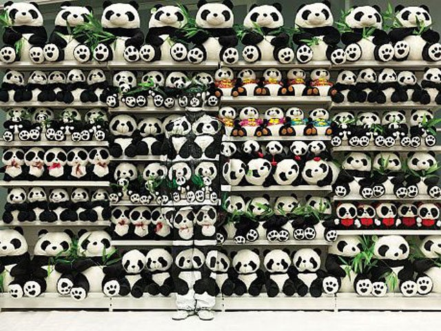 Can You See the Man Hidden in These Pandas?