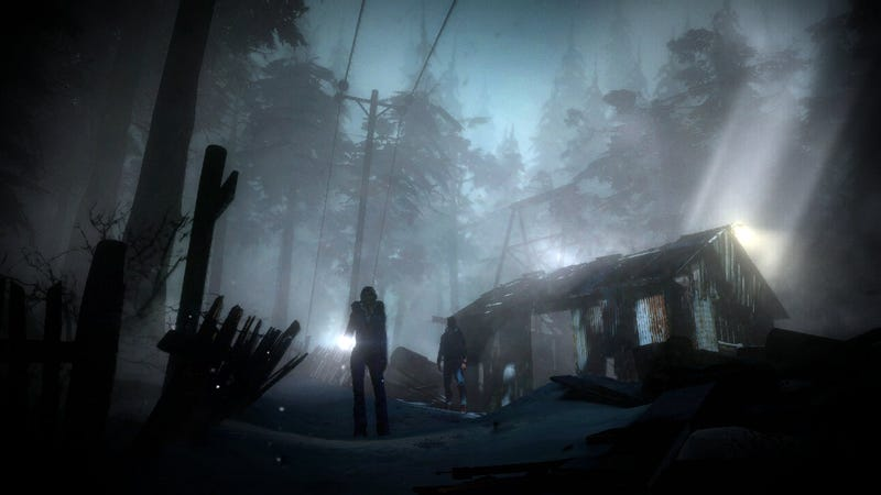 She's In Her Underwear. He's Running Through The Dark Woods. It's Teen Horror as a PS3 Game