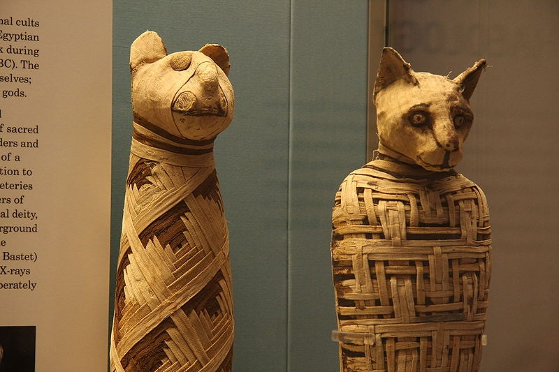 """Mummy Brown"" Paint Was Made Of Mummified Cats And Humans"