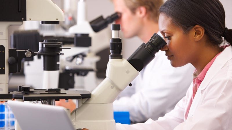 Women Drop Out of STEM Fields Because They Fear Failure