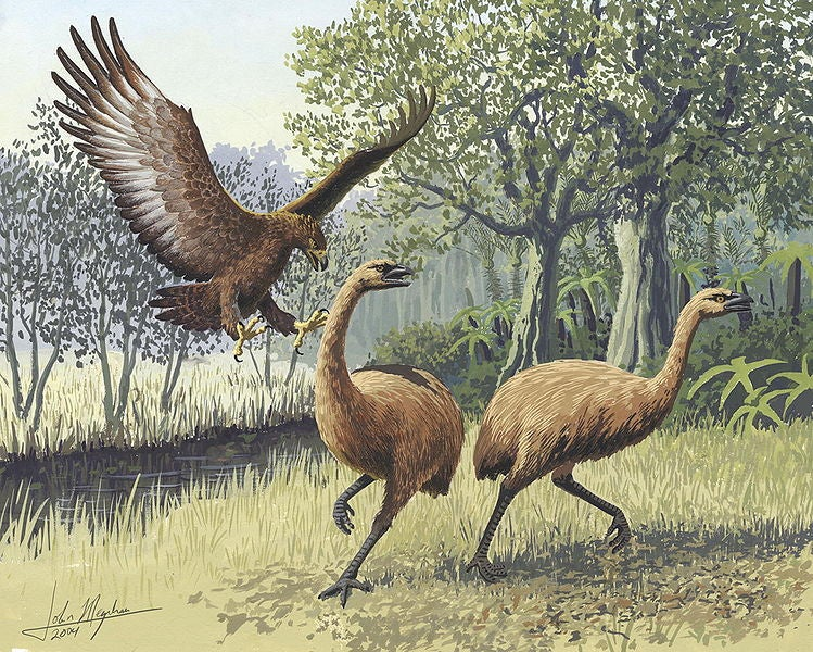 Extinct animals we could - and should - clone tomorrow