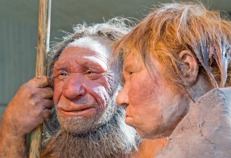 New DNA sequence shows that Neanderthals liked incest
