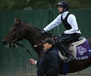 Your Breeders Cup Preview