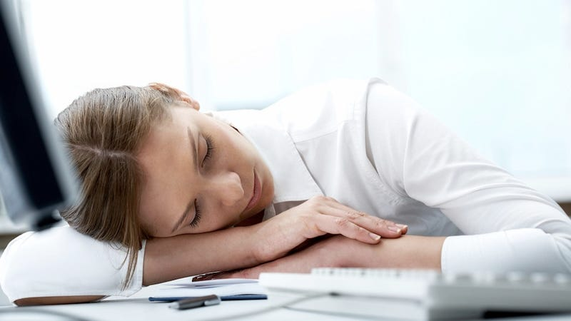 Want to Memorize Something? Take a Nap