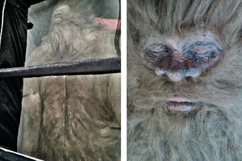 Uncovering the Dirty Secrets Behind the Latest Dead Bigfoot Story