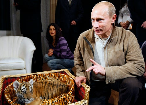 Vladimir Putin Hosted a Tiger Convention