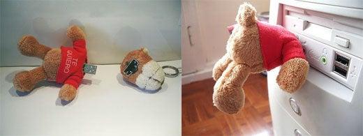 USB Teddy Bear With Removable Head