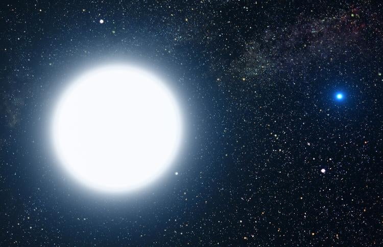 Intense magnetic fields around white dwarfs may instigate an entirely new class of molecular bonding