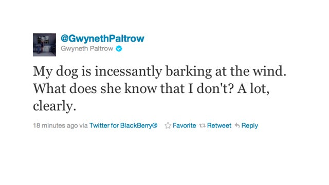 Let's Speculate on What Gwyneth Paltrow's Dog Is Barking At