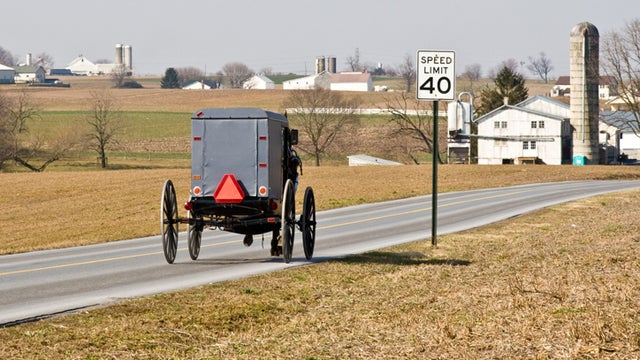 Four Drunk Amish Kids Crash A Buggy Into A Cop Car, But What Were They Arrested For?