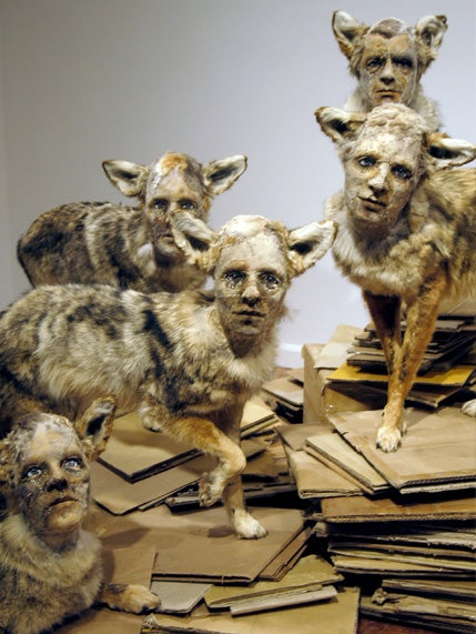 Creative Taxidermy Fuels Your Cryptozoological Nightmares