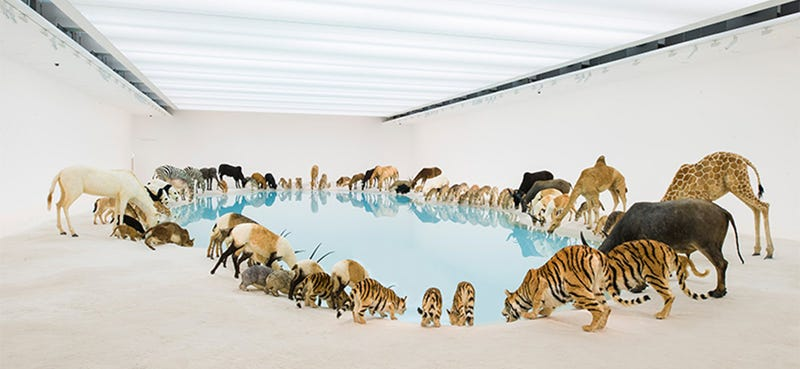 Surreal image: 99 wild animals drinking from a pool